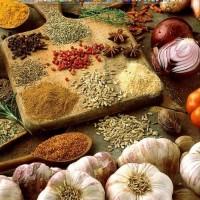 Waktunya Kuliner Indonesia Mendunia