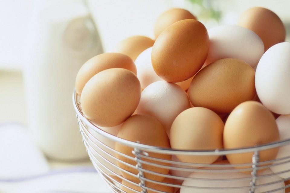 Tips Memilih Telur Segar