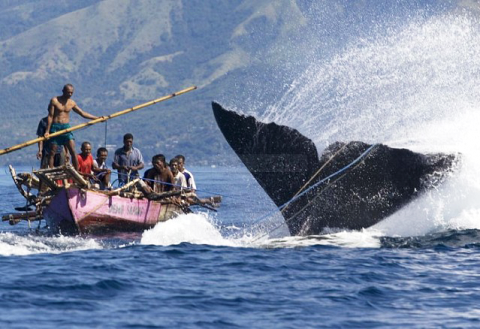 Bagian 2 - Perahu Para Pemburu Bernama Paledang