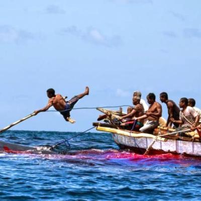 Para Pemburu Paus dari Lamalera, Nusa Tenggara Timur